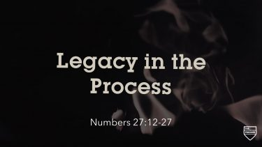 Legacy In The Process